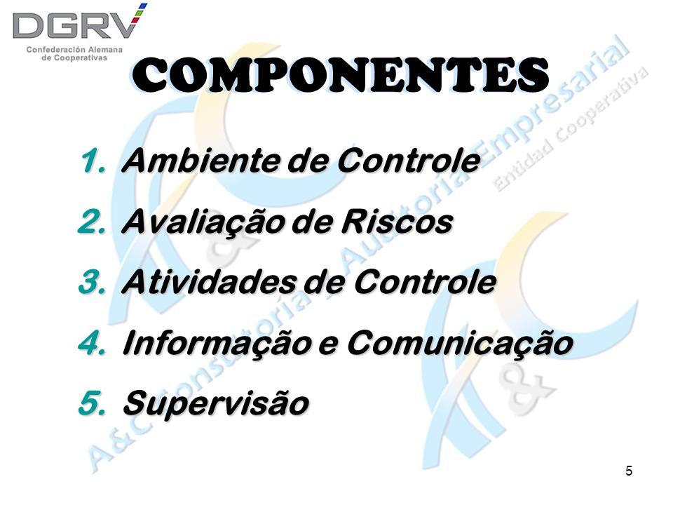 5 COMPONENTES 1.Ambiente de Controle 2.Avaliação de Riscos 3.Atividades de Controle 4.Informação e Comunicação 5.Supervisão 1.Ambiente de Controle 2.Avaliação de Riscos 3.Atividades de Controle 4.Informação e Comunicação 5.Supervisão