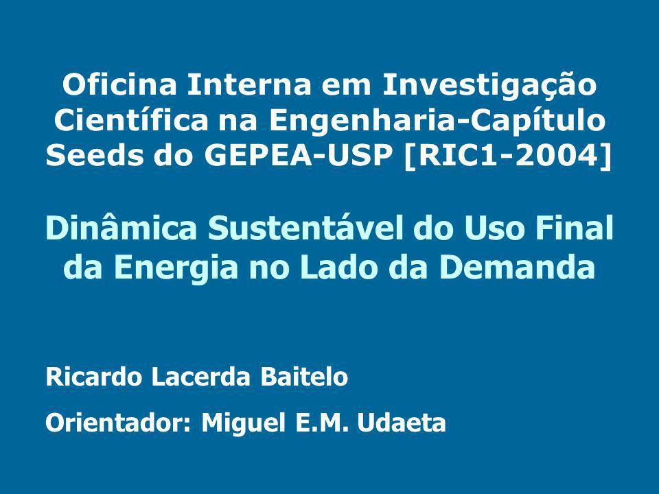 Oficina Interna em Investigação Científica na Engenharia-Capítulo Seeds do GEPEA-USP [RIC1-2004] Dinâmica Sustentável do Uso Final da Energia no Lado da Demanda Ricardo Lacerda Baitelo Orientador: Miguel E.M.