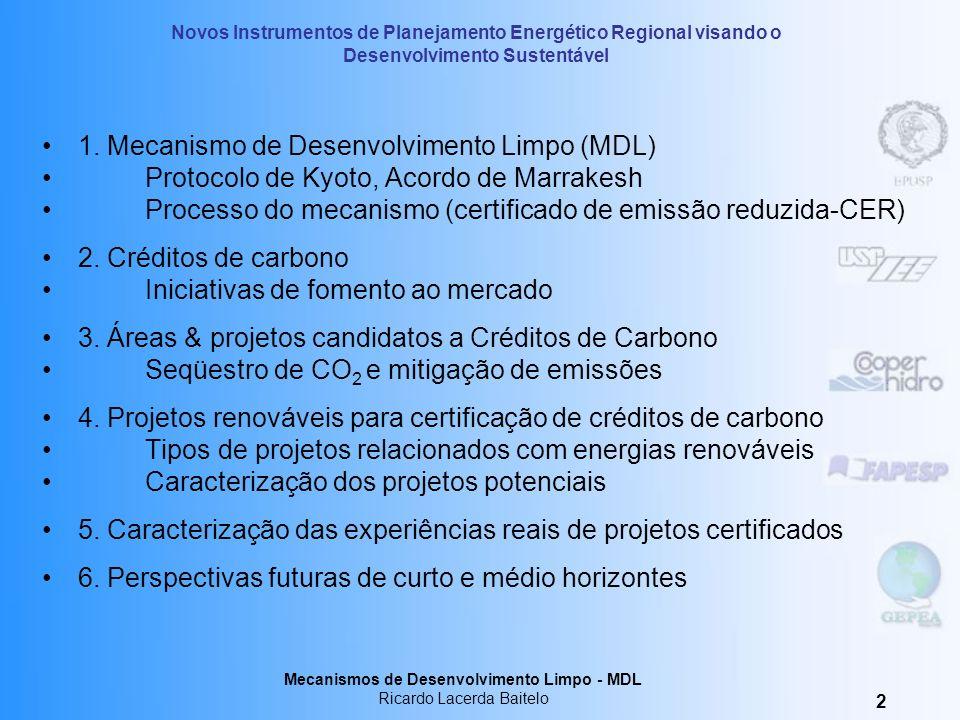 Mecanismos de Desenvolvimento Limpo MDL Ricardo Lacerda Baitelo Treinamento – 3,4 e 5 de novembro de 2004 Araçatuba - SP Novos Instrumentos de Planeja