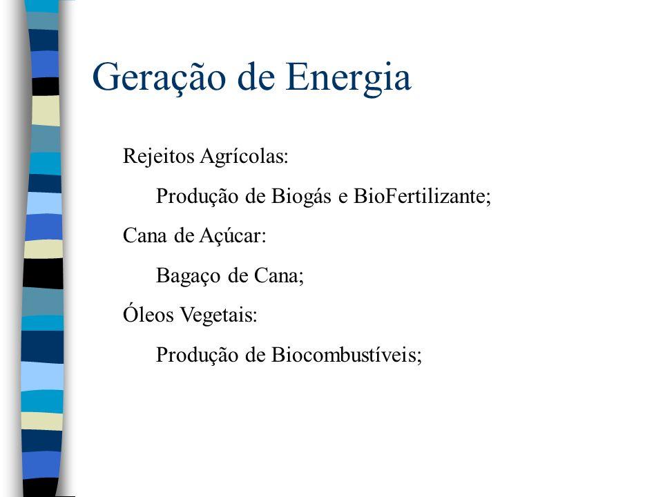 Geração de Energia Rejeitos Agrícolas: Produção de Biogás e BioFertilizante; Cana de Açúcar: Bagaço de Cana; Óleos Vegetais: Produção de Biocombustíve