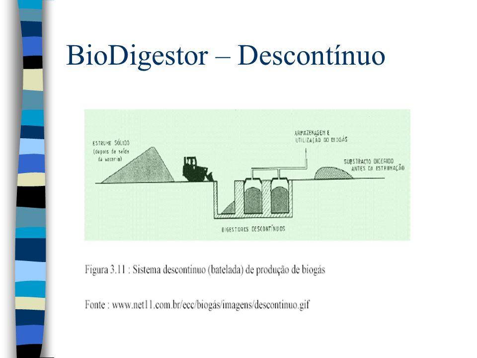 BioDigestor – Descontínuo