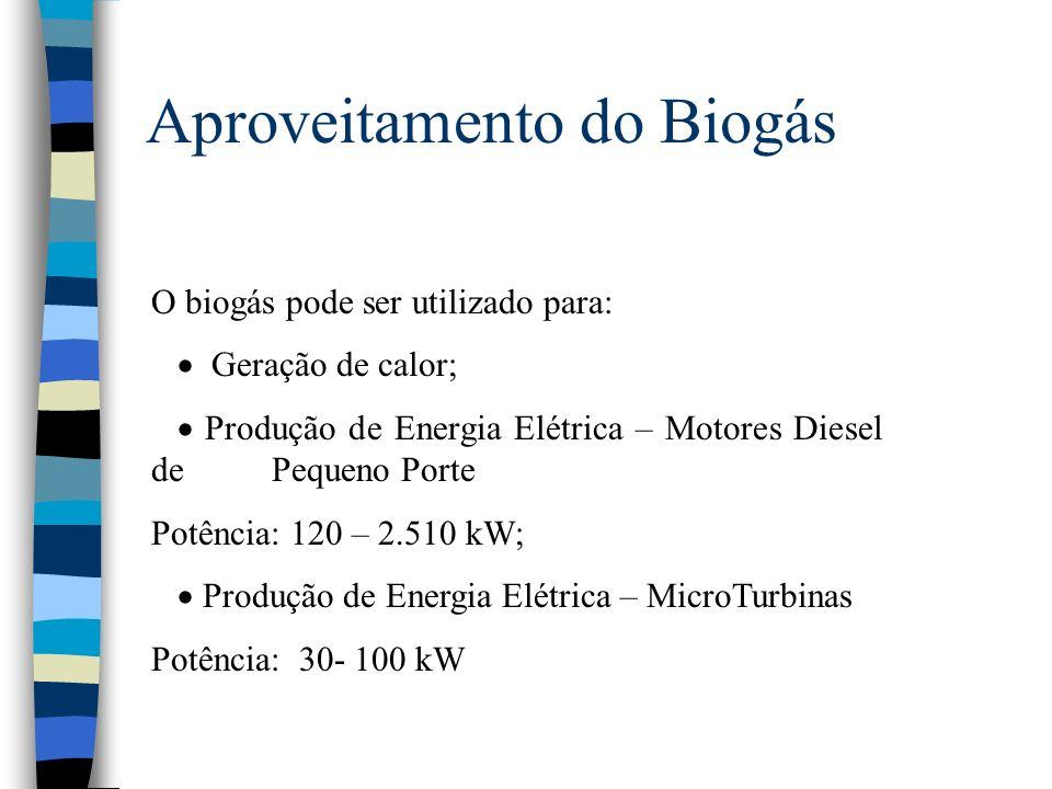 Aproveitamento do Biogás O biogás pode ser utilizado para: Geração de calor; Produção de Energia Elétrica – Motores Diesel de Pequeno Porte Potência: