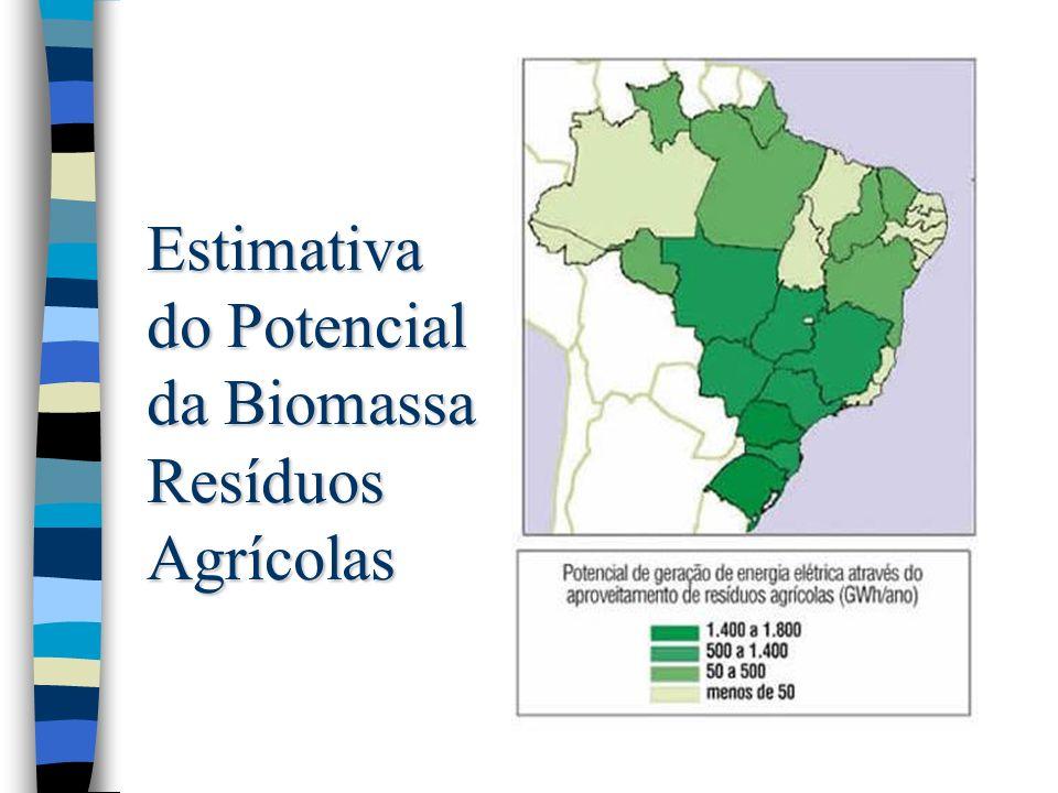 Estimativa do Potencial da Biomassa Resíduos da Madeira
