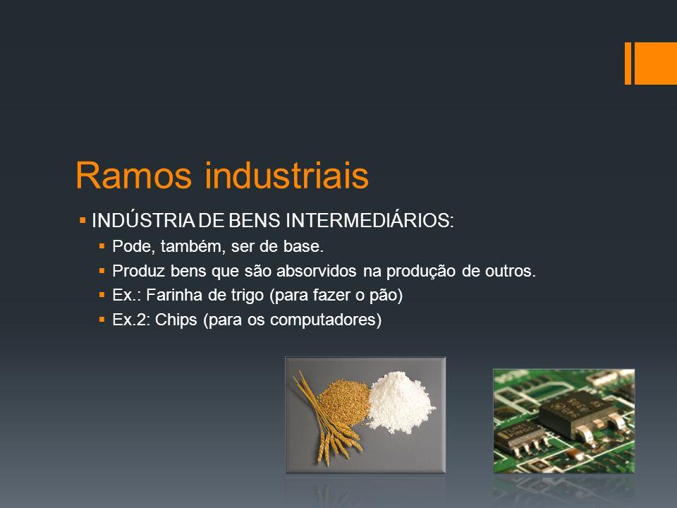 Ramos industriais INDÚSTRIA DE BENS DE CONSUMO: Fabrica produtos para o mercado consumidor Ex.: indústrias têxtil e alimentícia.
