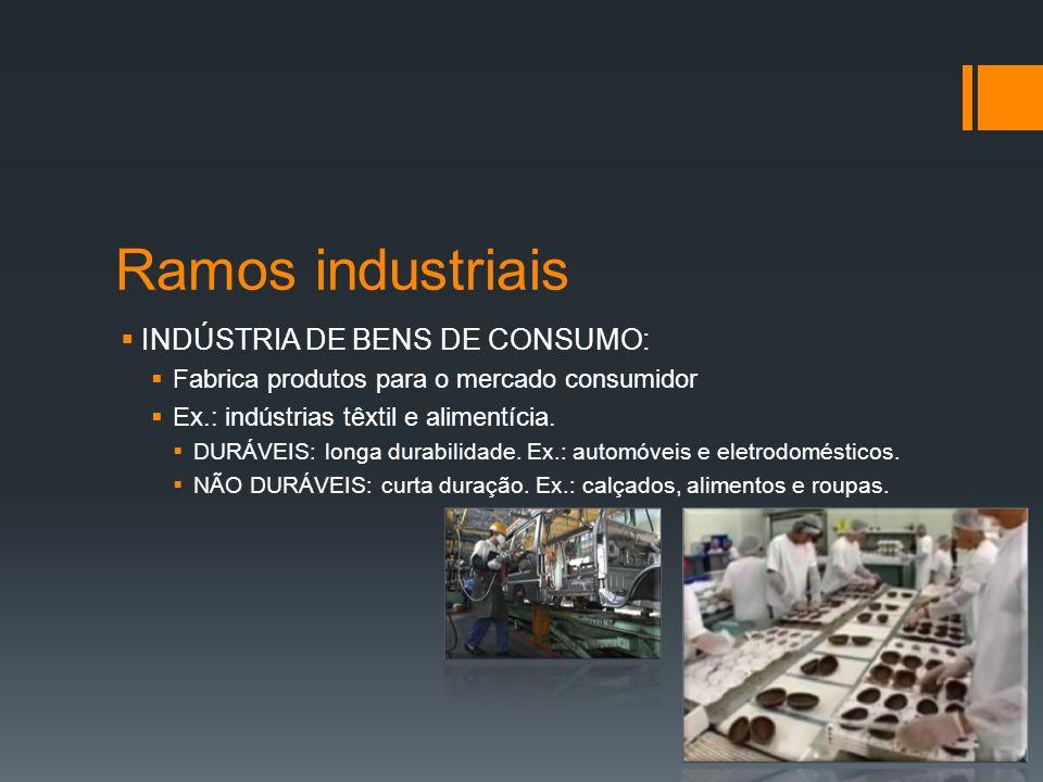 Atividade Industrial INDÚSTRIAS GERMINATIVAS: Necessitam de produtos elaborados por outras indústrias.