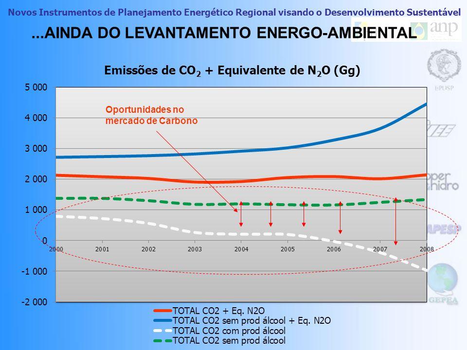 Novos Instrumentos de Planejamento Energético Regional visando o Desenvolvimento Sustentável Área RAA: 1.880.000 ha DO LEVANTAMENTO ENERGO-AMBIENTAL D