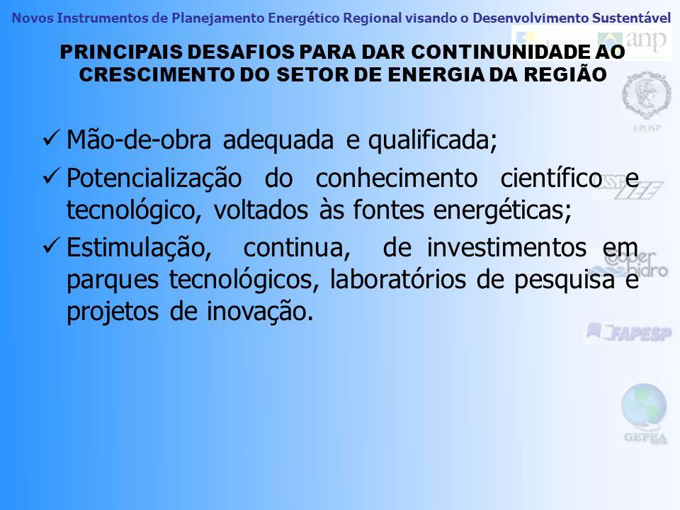 Novos Instrumentos de Planejamento Energético Regional visando o Desenvolvimento Sustentável VISÃO DE NEGÓCIOS DOS 5 RECUROS ENERGÉTICOS ESCOLHIDOS 22