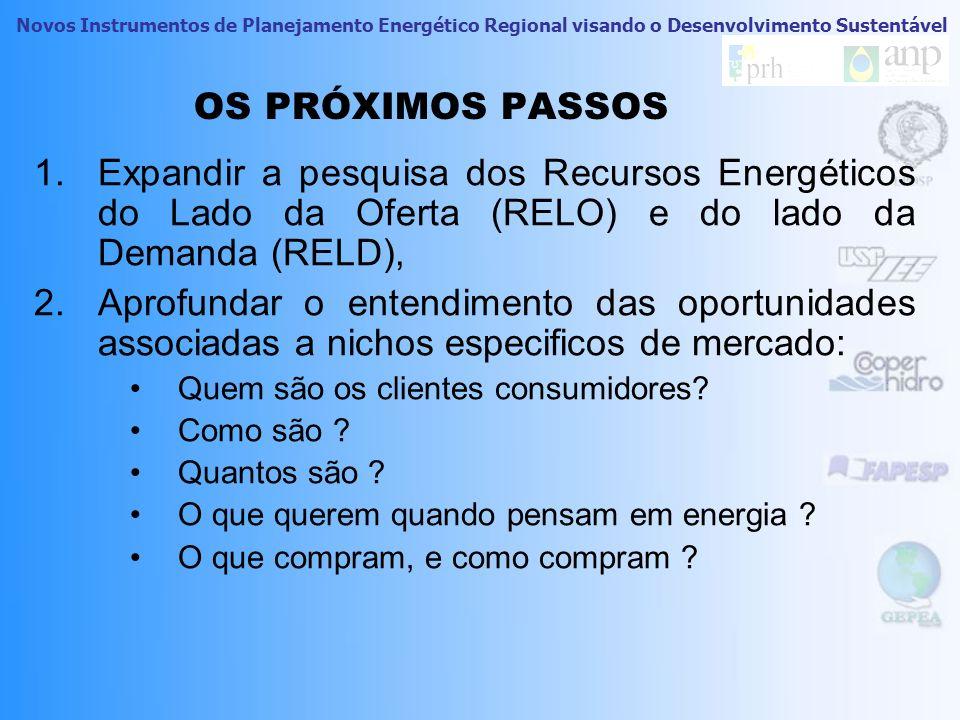 Novos Instrumentos de Planejamento Energético Regional visando o Desenvolvimento Sustentável CONSIDERAÇÕES FINAIS 24 Alguns comentários gerais sobre a