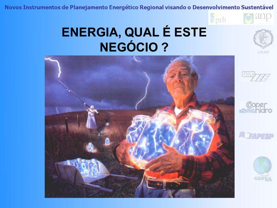Novos Instrumentos de Planejamento Energético Regional visando o Desenvolvimento Sustentável PLANO DE NEGÓCIOS PARA O PIR / Araçatuba O PIR como ferra
