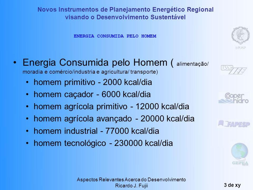 Aspectos Relevantes Acerca do Desenvolvimento Ricardo J. Fujii 2 de xy HISTÓRICO 1000000 anos - alimentos - 2000 kcal/dia 100000 anos - queimava madei
