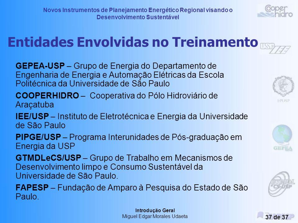 Novos Instrumentos de Planejamento Energético Regional visando o Desenvolvimento Sustentável Introdução Geral Miguel Edgar Morales Udaeta 36 de 37 3.