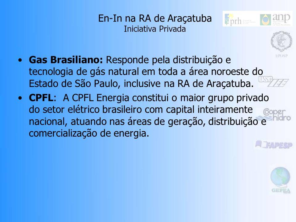 En-In na RA de Araçatuba Iniciativa Privada Gas Brasiliano: Responde pela distribuição e tecnologia de gás natural em toda a área noroeste do Estado de São Paulo, inclusive na RA de Araçatuba.