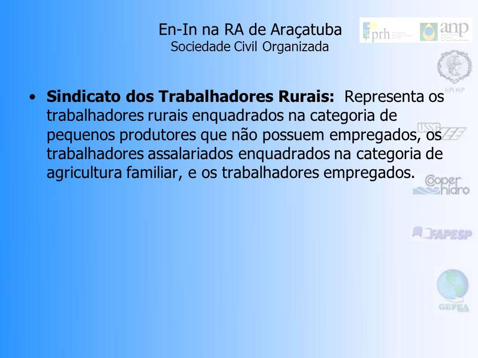 En-In na RA de Araçatuba Sociedade Civil Organizada Sindicato dos Trabalhadores Rurais: Representa os trabalhadores rurais enquadrados na categoria de pequenos produtores que não possuem empregados, os trabalhadores assalariados enquadrados na categoria de agricultura familiar, e os trabalhadores empregados.