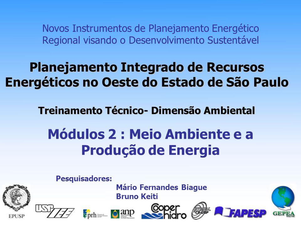Planejamento Integrado de Recursos Energéticos no Oeste do Estado de São Paulo Treinamento Técnico- Dimensão Ambiental Novos Instrumentos de Planejamento Energético Regional visando o Desenvolvimento Sustentável Módulos 2 : Meio Ambiente e a Produção de Energia Pesquisadores: Mário Fernandes Biague Bruno Keiti