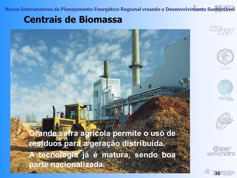Novos Instrumentos de Planejamento Energético Regional visando o Desenvolvimento Sustentável 29 Centrais de Biomassa Briquetes de madeira