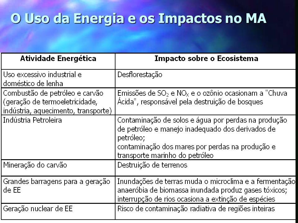 19 O Uso da Energia e os Impactos no MA