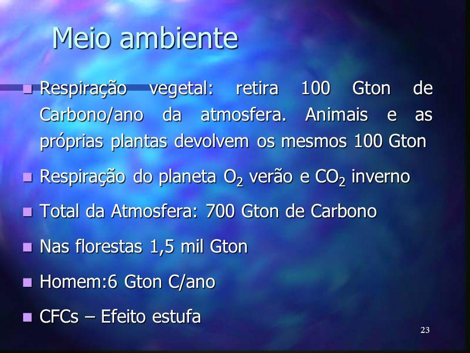 23 Meio ambiente Respiração vegetal: retira 100 Gton de Carbono/ano da atmosfera. Animais e as próprias plantas devolvem os mesmos 100 Gton Respiração