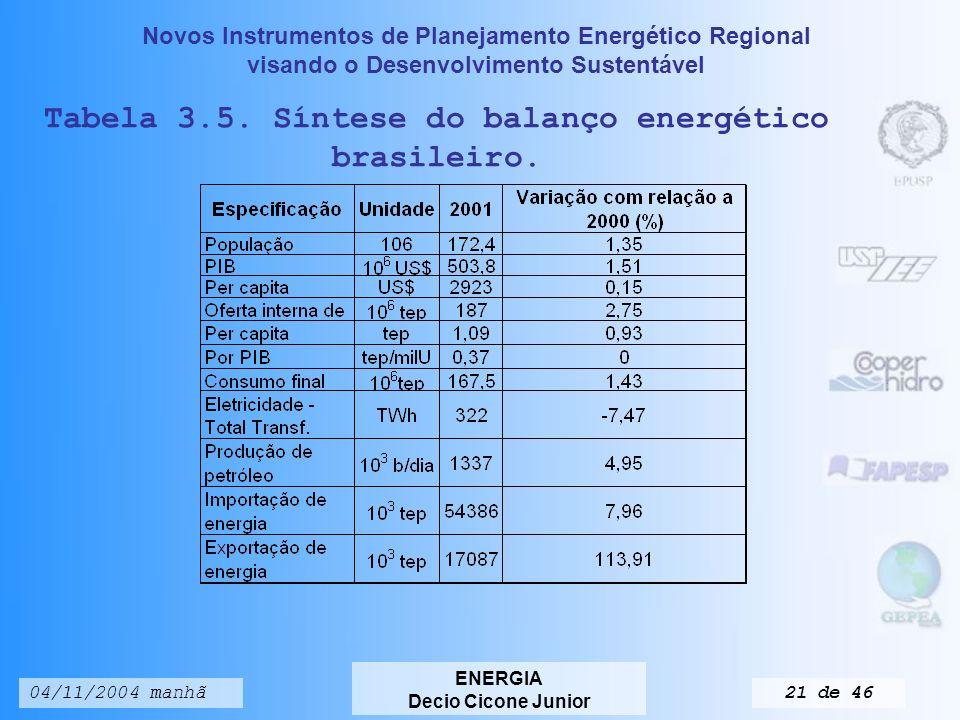 Novos Instrumentos de Planejamento Energético Regional visando o Desenvolvimento Sustentável ENERGIA Decio Cicone Junior 04/11/2004 manhã20 de 46 Fonte: Ministério das Minas e Energia, Balanço Energético Brasileiro (2002).