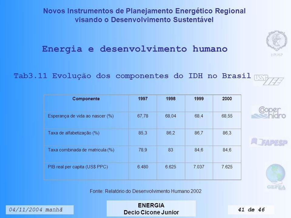 Novos Instrumentos de Planejamento Energético Regional visando o Desenvolvimento Sustentável ENERGIA Decio Cicone Junior 04/11/2004 manhã40 de 46 PaísesTarifa Aplicada na Importação (%)Tarifa Enfrentada na Exportação (%) Argentina14,618,0 Bolívia10,010,8 Brasil14,431,7 Canadá27,114,5 Chile9,015,2 Colômbia16,113,5 Estados Unidos21,715,0 Equador15,49,5 Guatemala8,620,6 Honduras15,19,2 México39,814,6 Panamá24,114,5 Paraguai14,19,6 Peru18,311,6 Uruguai14,424,2 Venezuela16,024,2 Alíquotas impostas e alíquotas enfrentadas pelos países