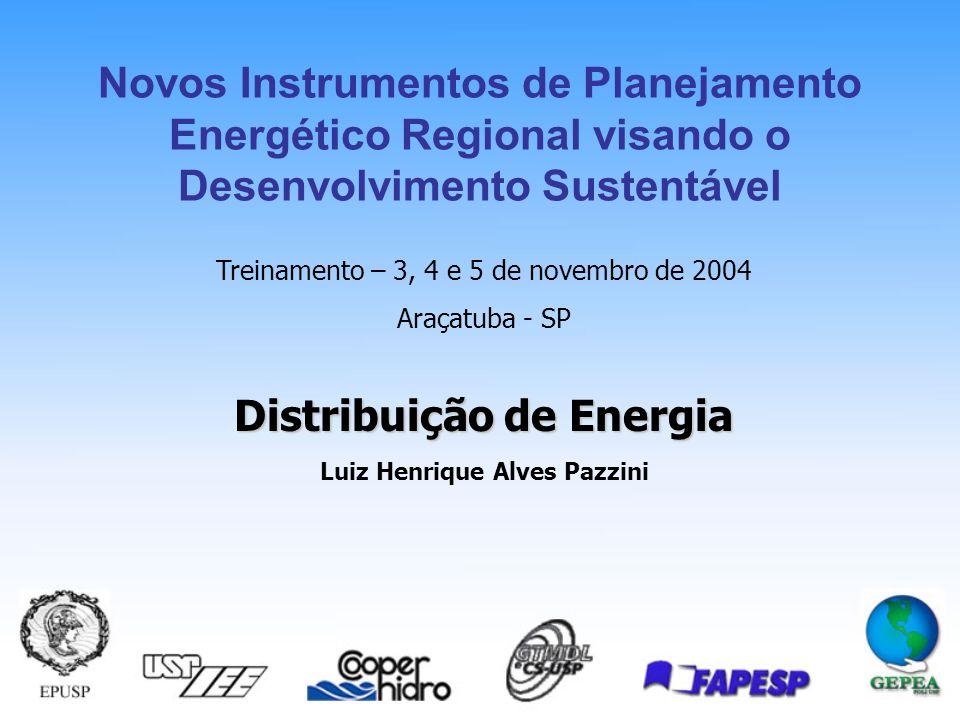 Distribuição de Energia Luiz Henrique Alves Pazzini Treinamento – 3, 4 e 5 de novembro de 2004 Araçatuba - SP Novos Instrumentos de Planejamento Energético Regional visando o Desenvolvimento Sustentável
