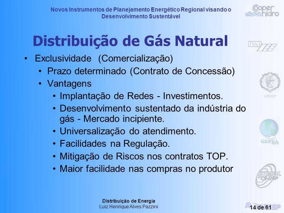 Novos Instrumentos de Planejamento Energético Regional visando o Desenvolvimento Sustentável Distribuição de Energia Luiz Henrique Alves Pazzini 13 de