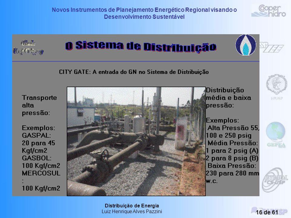 Novos Instrumentos de Planejamento Energético Regional visando o Desenvolvimento Sustentável Distribuição de Energia Luiz Henrique Alves Pazzini 15 de