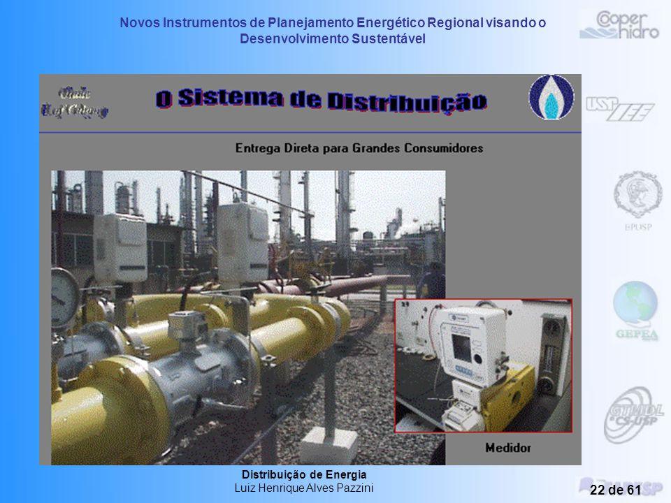 Novos Instrumentos de Planejamento Energético Regional visando o Desenvolvimento Sustentável Distribuição de Energia Luiz Henrique Alves Pazzini 21 de