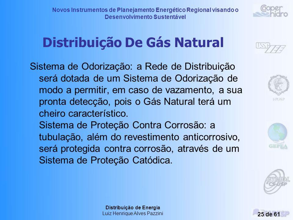 Novos Instrumentos de Planejamento Energético Regional visando o Desenvolvimento Sustentável Distribuição de Energia Luiz Henrique Alves Pazzini 24 de