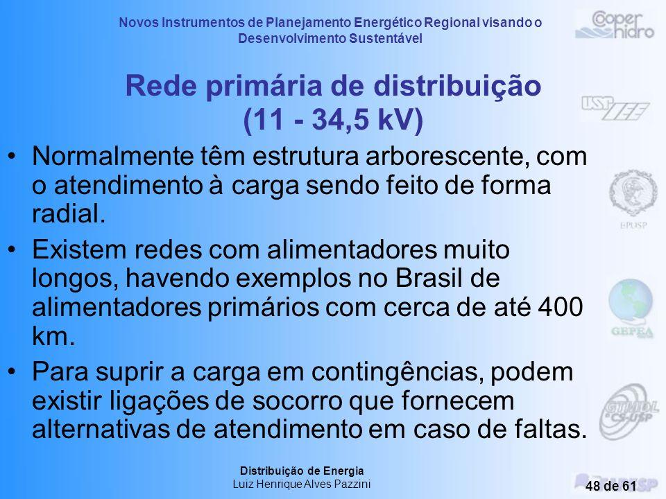 Novos Instrumentos de Planejamento Energético Regional visando o Desenvolvimento Sustentável Distribuição de Energia Luiz Henrique Alves Pazzini 47 de