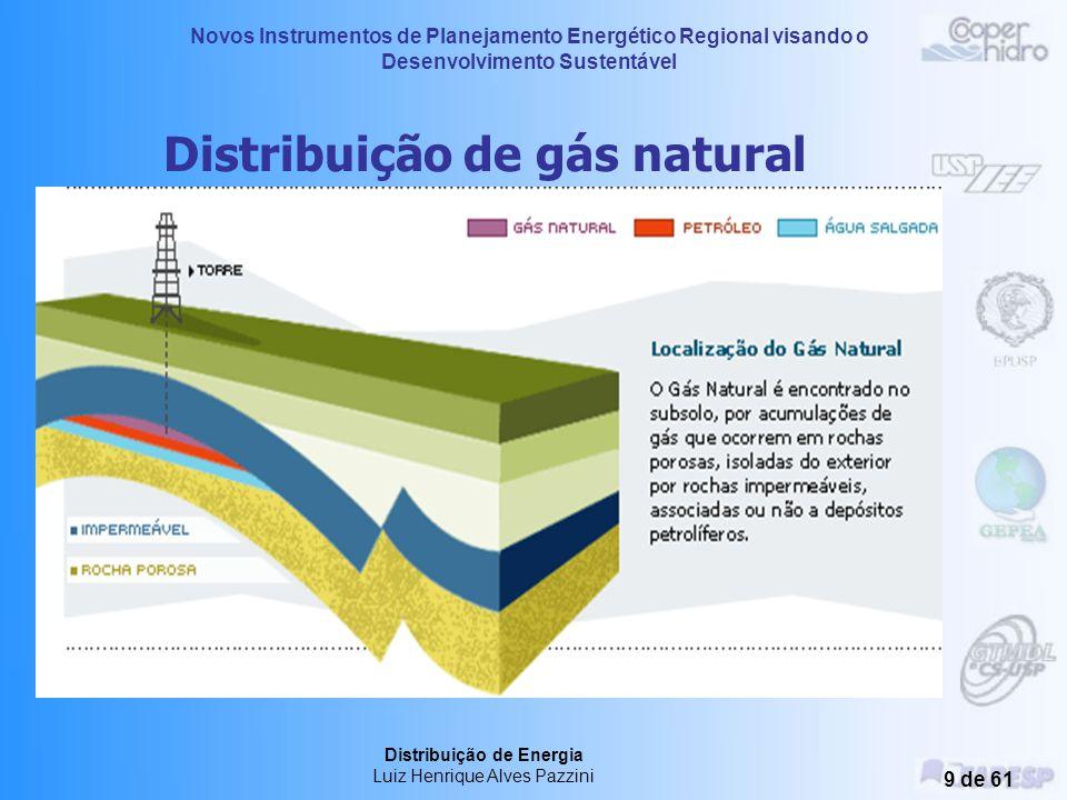 Novos Instrumentos de Planejamento Energético Regional visando o Desenvolvimento Sustentável Distribuição de Energia Luiz Henrique Alves Pazzini 9 de 61 Distribuição de gás natural
