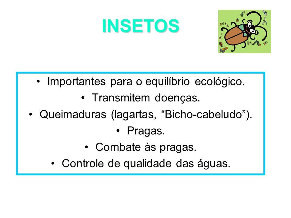 Importantes para o equilíbrio ecológico. Transmitem doenças. Queimaduras (lagartas, Bicho-cabeludo). Pragas. Combate às pragas. Controle de qualidade