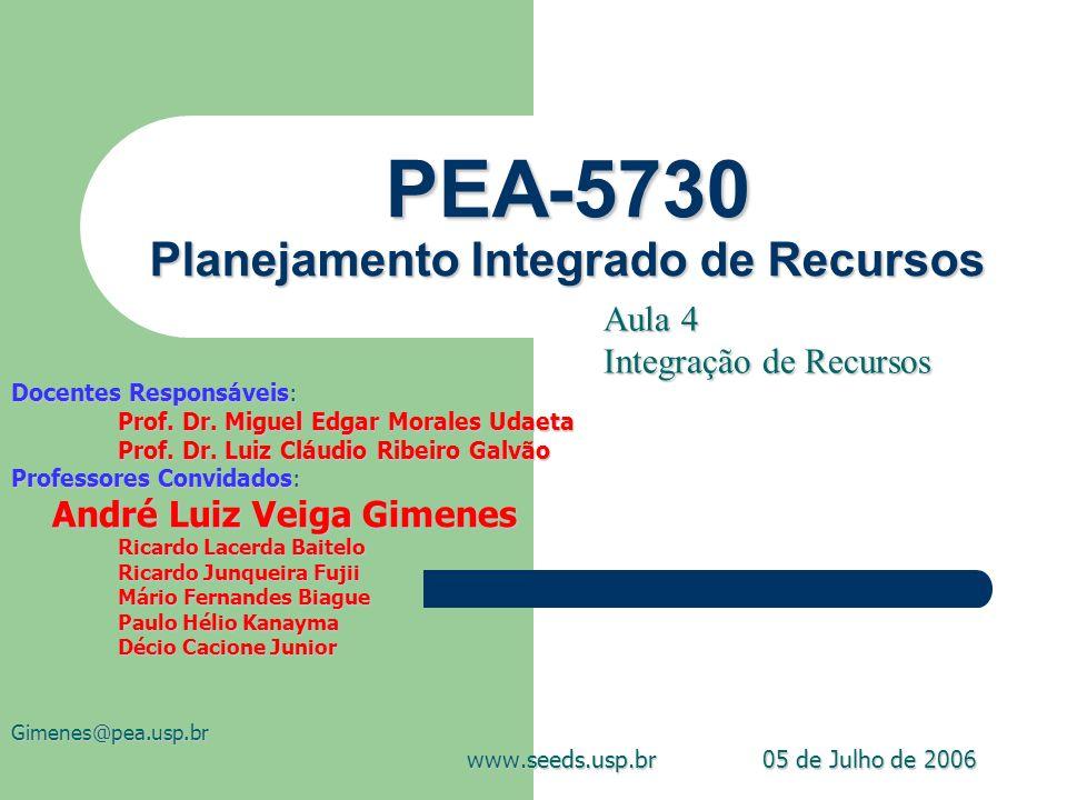 PEA-5730 Planejamento Integrado de Recursos Docentes Responsáveis: Prof. Dr. Miguel Edgar Morales Udaeta Prof. Dr. Luiz Cláudio Ribeiro Galvão Profess
