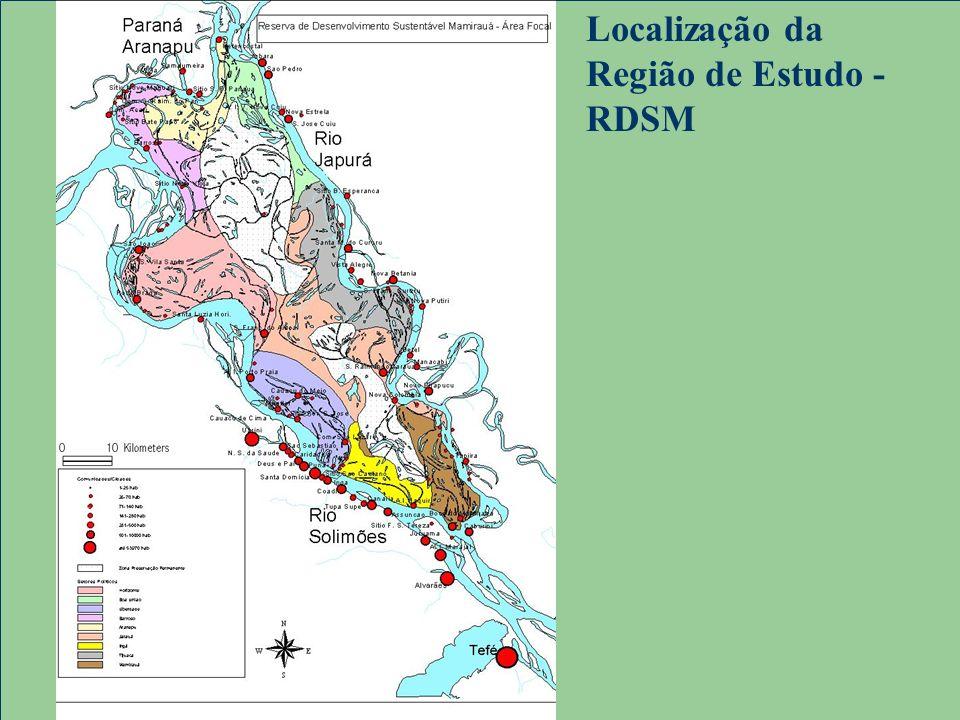 Localização da Região de Estudo - RDSM