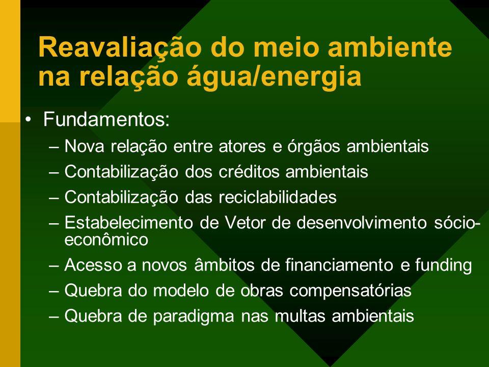 Reavaliação do meio ambiente na relação água/energia Fundamentos: –Nova relação entre atores e órgãos ambientais –Contabilização dos créditos ambienta