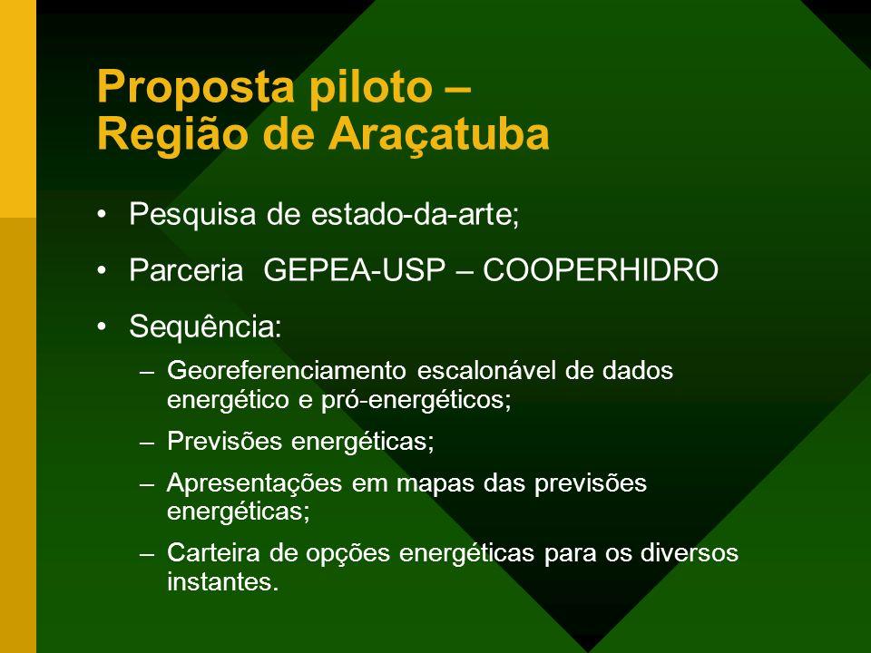 Proposta piloto – Região de Araçatuba Pesquisa de estado-da-arte; Parceria GEPEA-USP – COOPERHIDRO Sequência: –Georeferenciamento escalonável de dados