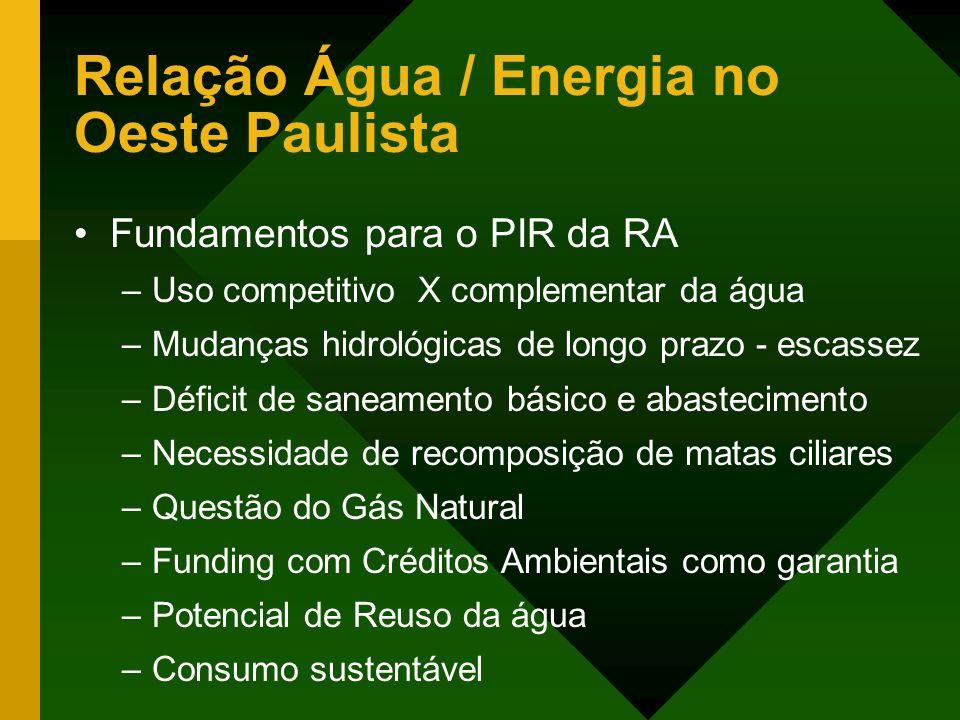 Relação Água / Energia no Oeste Paulista Fundamentos para o PIR da RA –Uso competitivo X complementar da água –Mudanças hidrológicas de longo prazo -