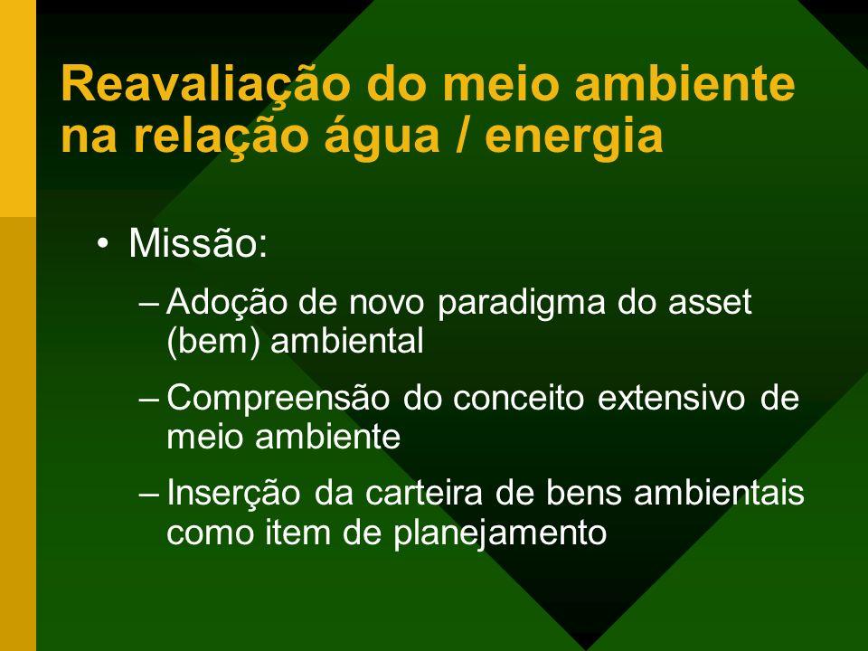 Reavaliação do meio ambiente na relação água / energia Missão: –Adoção de novo paradigma do asset (bem) ambiental –Compreensão do conceito extensivo d