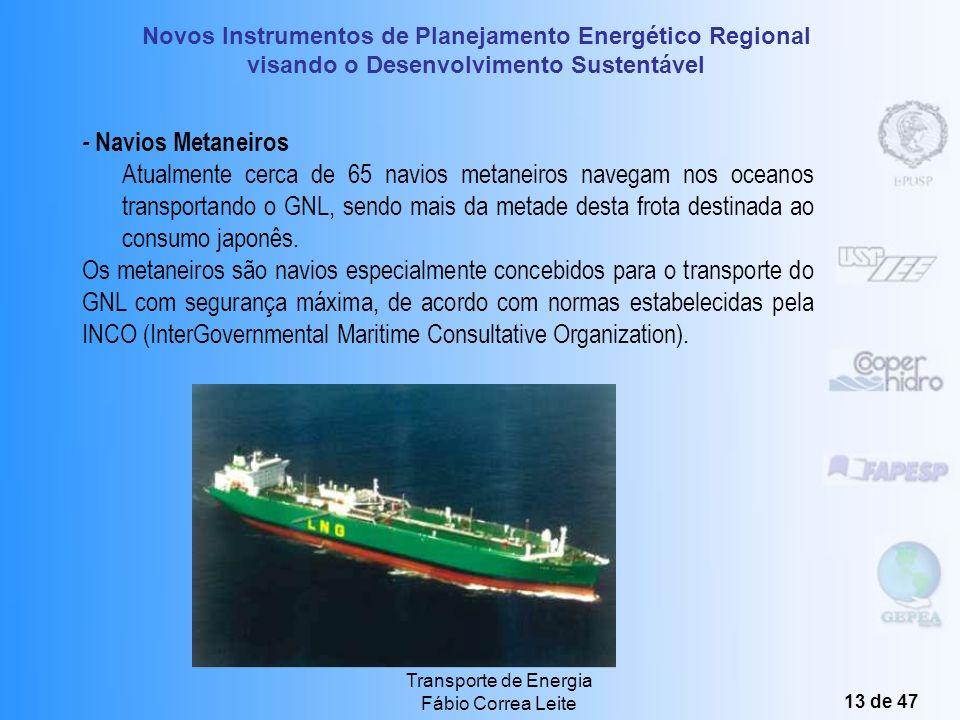 Novos Instrumentos de Planejamento Energético Regional visando o Desenvolvimento Sustentável Transporte de Energia Fábio Correa Leite 12 de 47 Princip