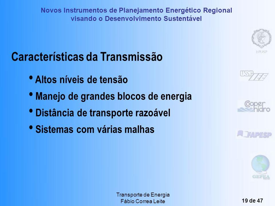 Novos Instrumentos de Planejamento Energético Regional visando o Desenvolvimento Sustentável Transporte de Energia Fábio Correa Leite 18 de 47 Funções