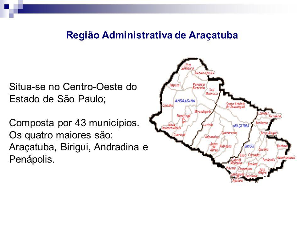 Situa-se no Centro-Oeste do Estado de São Paulo; Composta por 43 municípios. Os quatro maiores são: Araçatuba, Birigui, Andradina e Penápolis. Região
