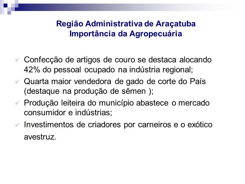 Confecção de artigos de couro se destaca alocando 42% do pessoal ocupado na indústria regional; Quarta maior vendedora de gado de corte do País (desta