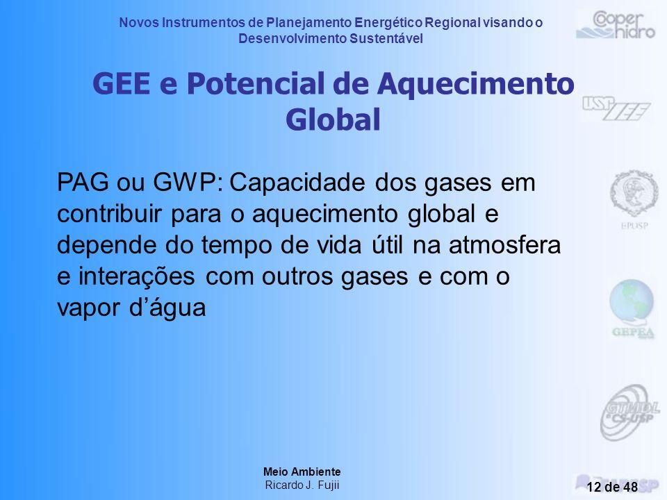 Novos Instrumentos de Planejamento Energético Regional visando o Desenvolvimento Sustentável Meio Ambiente Ricardo J. Fujii 11 de 48 Fontes Antropogên