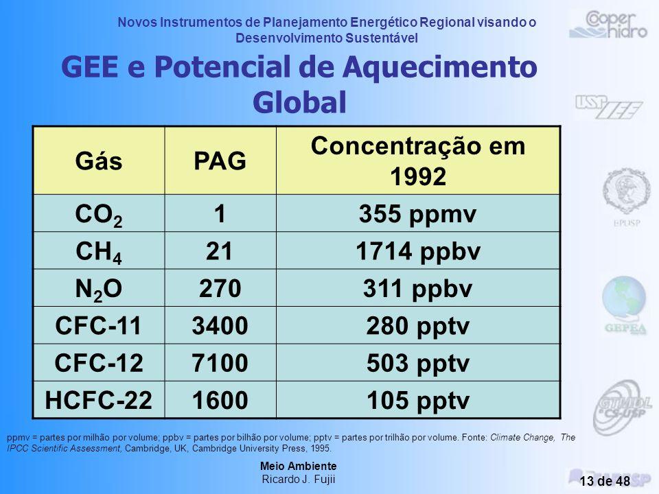Novos Instrumentos de Planejamento Energético Regional visando o Desenvolvimento Sustentável Meio Ambiente Ricardo J. Fujii 12 de 48 GEE e Potencial d