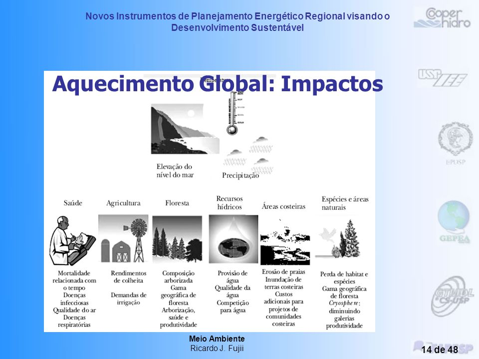 Novos Instrumentos de Planejamento Energético Regional visando o Desenvolvimento Sustentável Meio Ambiente Ricardo J. Fujii 13 de 48 GEE e Potencial d