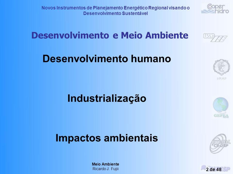 Meio Ambiente Ricardo J. Fujii Treinamento – 3, 4 e 5 de novembro de 2004 Araçatuba - SP Novos Instrumentos de Planejamento Energético Regional visand