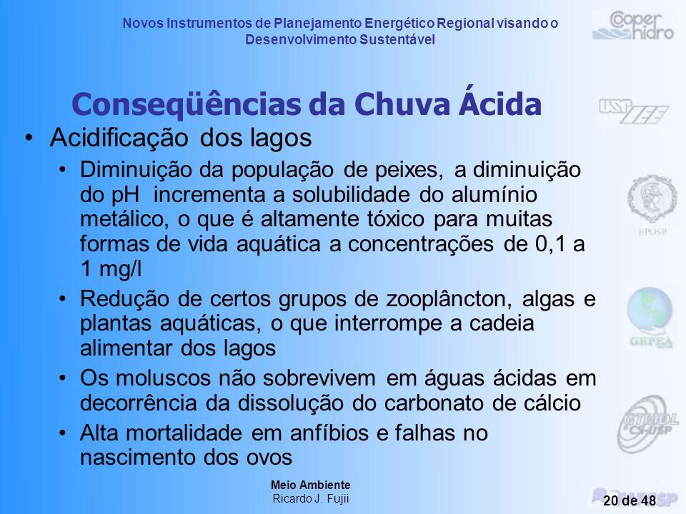 Novos Instrumentos de Planejamento Energético Regional visando o Desenvolvimento Sustentável Meio Ambiente Ricardo J. Fujii 19 de 48 Chuva Ácida Afeta