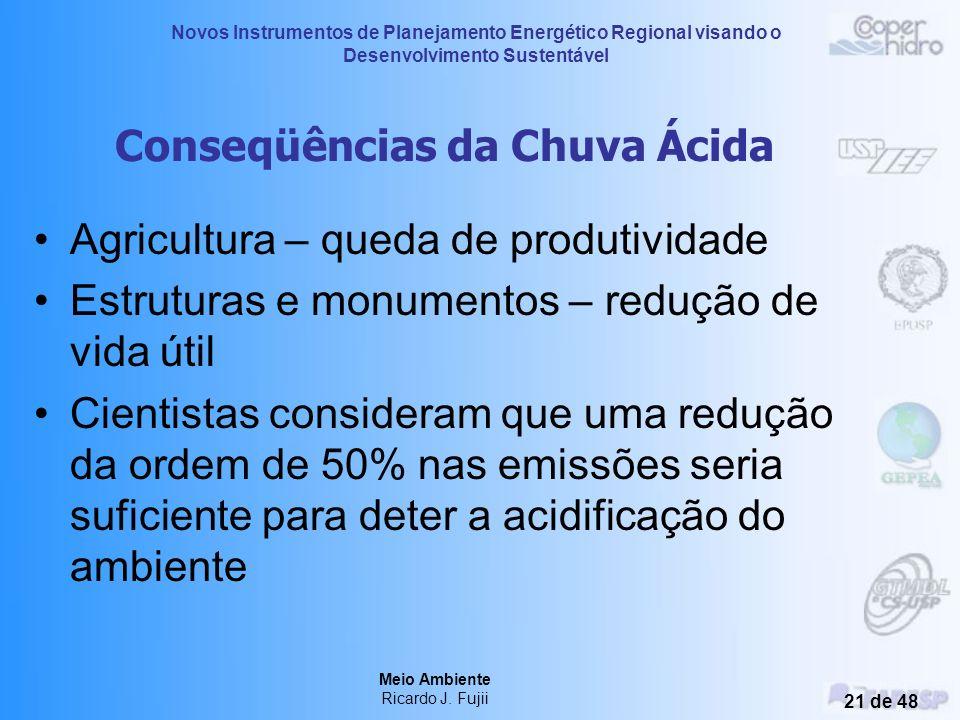 Novos Instrumentos de Planejamento Energético Regional visando o Desenvolvimento Sustentável Meio Ambiente Ricardo J. Fujii 20 de 48 Conseqüências da