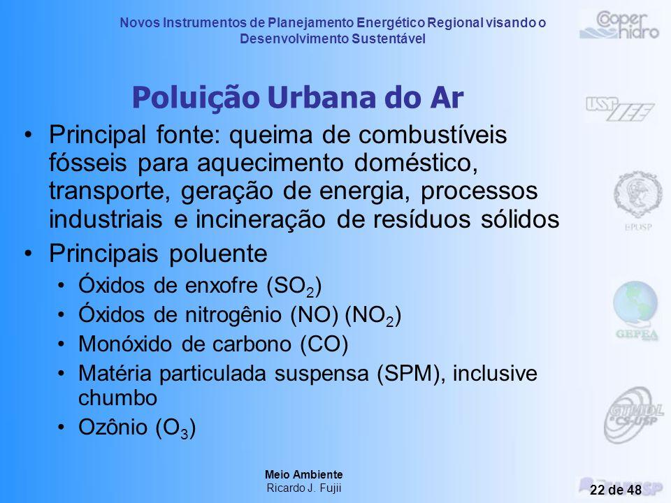 Novos Instrumentos de Planejamento Energético Regional visando o Desenvolvimento Sustentável Meio Ambiente Ricardo J. Fujii 21 de 48 Conseqüências da