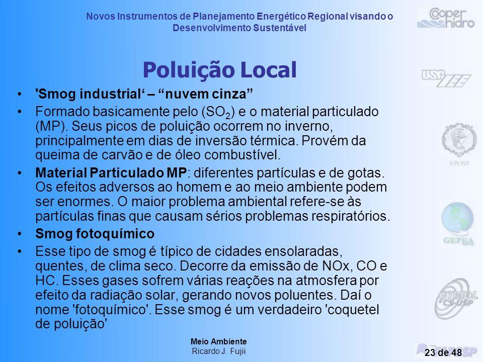 Novos Instrumentos de Planejamento Energético Regional visando o Desenvolvimento Sustentável Meio Ambiente Ricardo J. Fujii 22 de 48 Poluição Urbana d