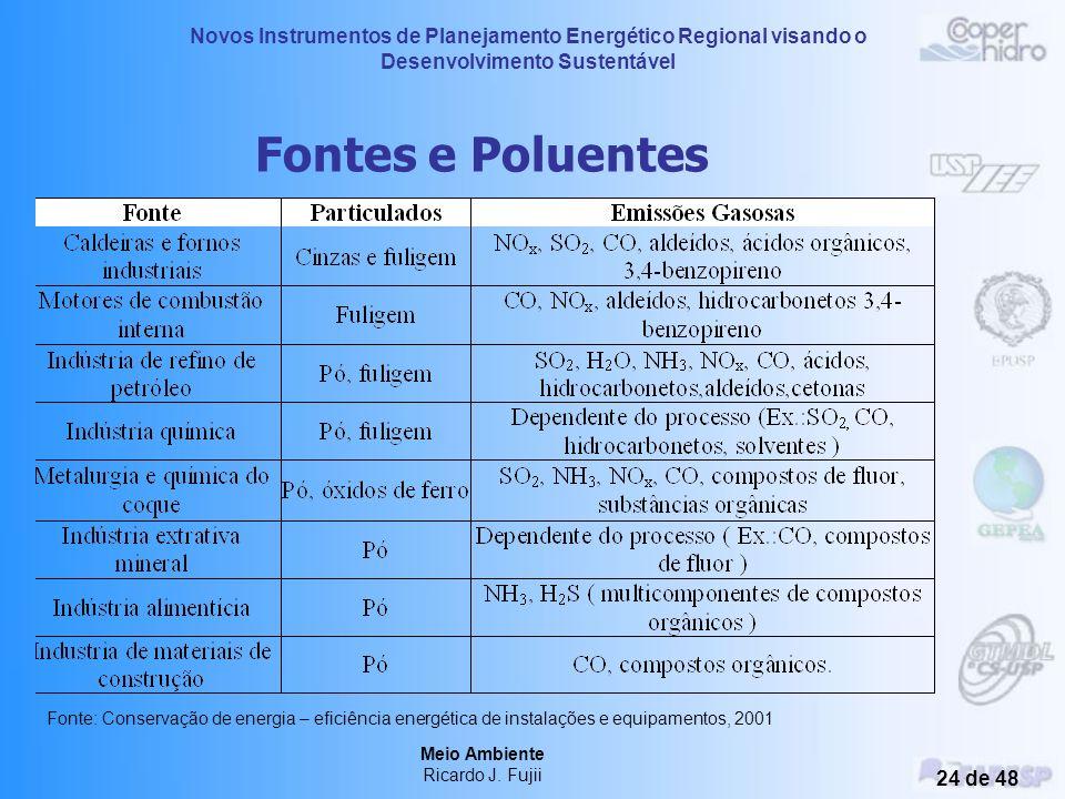 Novos Instrumentos de Planejamento Energético Regional visando o Desenvolvimento Sustentável Meio Ambiente Ricardo J. Fujii 23 de 48 Poluição Local 'S
